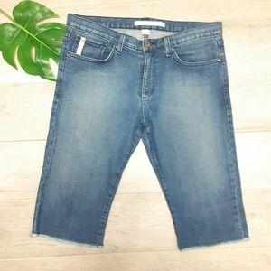 Standard Cloth Mens denim shorts Size 32